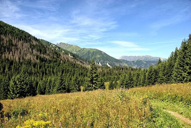 Najlepsze wczasy - tylko w górach!